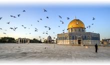 Planes Turisticos de México a Israel 2019