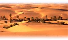 Viaje a Marruecos en Semana Santa y Fin de Año