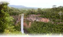 Excursiones por Sudáfrica desde    México