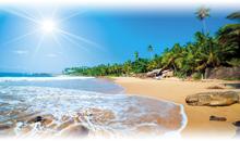 sri lanka, la perla del índico + extensión playas de sri lanka