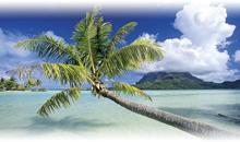 tahiti - moorea - bora bora (overwater bungalow en moorea)