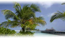 india, maldivas y dubai: lujo - anantara veli media pensión