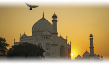 india con estilo (hoteles oberoi)  media pensión + 1 noche en delhi - guía acompañante delhi, agra y jaipur