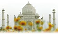 india con estilo (hoteles leela/itc)