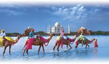 india con estilo (hoteles leela/itc) + 1 noche en delhi  - guía acompañante delhi, agra y jaipur