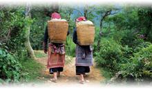 vietnã classico e sapa