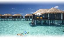 oferta hotel velassaru maldives (hab. deluxe bungalow)