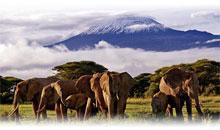 Itinerarios de Viaje Kenia Precios