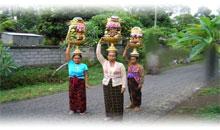 Vacaciones en Indonesia Promociones