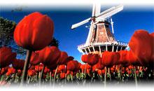 Paquetes de Viajes Baratos a Holanda desde