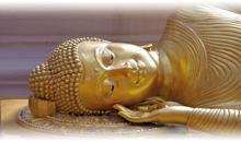 Tour a Camboya desde