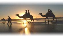 Ofertas de Hotel y Vuelo a África desde CDMX
