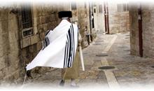 israel: tierra santa (incluido 4 cenas, guías en español)