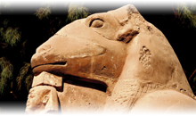 Vacaciones en Egipto Promociones