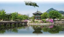 Paquetes de Viajes Baratos a Corea del Sur desde Bogotá