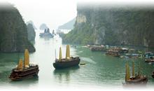 tailandia y vietnam + promo dubai gratis