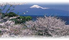japon, corea del sur y china con hiroshima