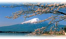 BANZAI A LA INVERSA (Hiroshima y Miyajima)