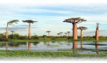 madagascar: norte colorido