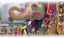 india: triangulo dorado y ganges (con guía acompañante en español en delhi, jaipur y agra + 1 noche final delhi) - desde abril 2020