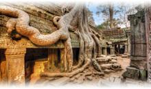 Paquetes a Camboya desde CDMX Economicos