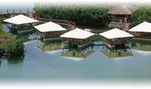 ISLA MAURICIO: HOTEL CONSTANCE LE PRINCE MAURICE (Junior Suite Stilts)