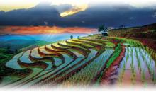 bellezas de tailandia (bangkok/chiang mai) - salidas especiales
