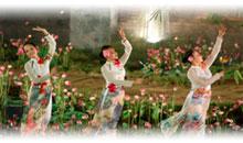 Viaje a Ásia en Semana Santa y Fin de Año